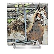 Horse N Hay Shower Curtain