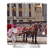Horse Needs Water In Old Montreal-quebec-canada Shower Curtain