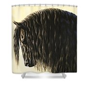Horse Painting - Friesland Nobility Shower Curtain by Crista Forest