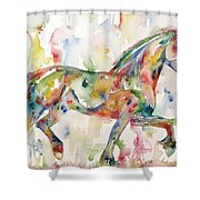 Horse Painting.23 Shower Curtain