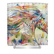 Horse Painting.24 Shower Curtain