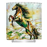 Horse Painting.25 Shower Curtain