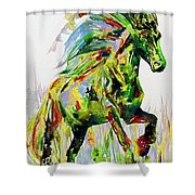 Horse Painting.26 Shower Curtain