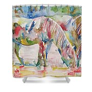 Horse Painting.27 Shower Curtain