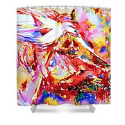 Horse Painting.28 Shower Curtain