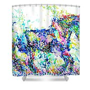 Horse Painting.33 Shower Curtain