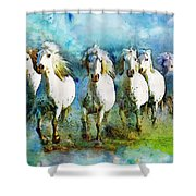 Horse Paintings 006 Shower Curtain by Catf