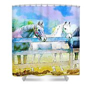 Horse Paintings 008 Shower Curtain
