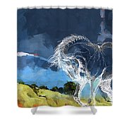 Horse Paintings 012 Shower Curtain
