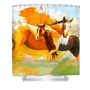 Horse Paintings 013 Shower Curtain