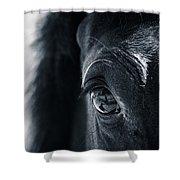 Horse Reflection Shower Curtain