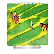 Horse Riding On Snow Peas Little People On Food Shower Curtain