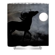 Horse Silhoette Shower Curtain