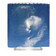 Horse Spirit Cloud Shower Curtain