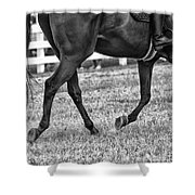 Horse Stepping Shower Curtain