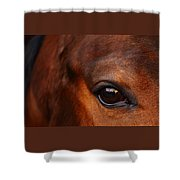 Soul Reflection Shower Curtain
