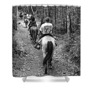 Horse Trail Shower Curtain by Frozen in Time Fine Art Photography