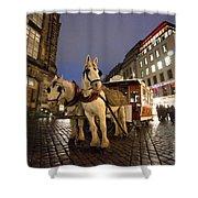 Horse Tram Shower Curtain