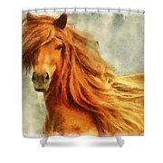 Horse Two Shower Curtain