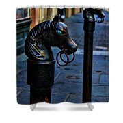 Horse With Blue Eyes Shower Curtain