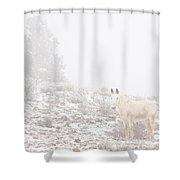 Horse With Winter Season Snow And Fog Shower Curtain