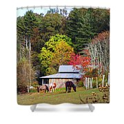 Horses And Barn In The Fall Shower Curtain