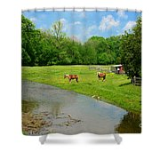 Horses At Home On The Range Shower Curtain