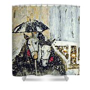 Horses At Stephansdom  Shower Curtain