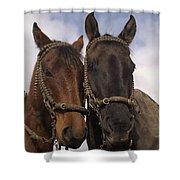 Horses  Belonging To Chagras Ecuador Shower Curtain