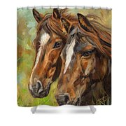 Horses Shower Curtain by David Stribbling