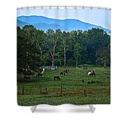 Horses Graze At Dawn Shower Curtain