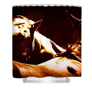 Horses In The Afternoon Shower Curtain