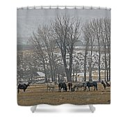 Horses In The Snow   #7940 Shower Curtain