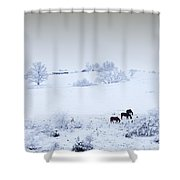 Horses In The Snow Shower Curtain