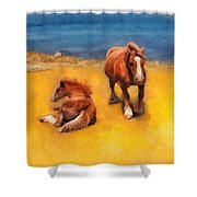 Horses On The Coast Of Brittany Shower Curtain