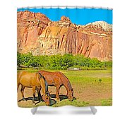 Horses On The Gifford Farm In Fruita In Capitol Reef National Park-utah Shower Curtain