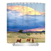 Horses On The Storm 2 Shower Curtain