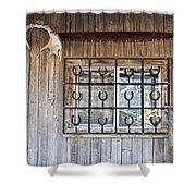 Horseshoe Art Shower Curtain