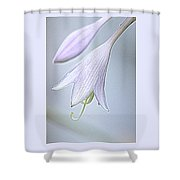 Hosta Shower Curtain