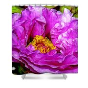 Hot-pink Flower Shower Curtain