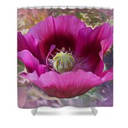 Hot Pink Poppy Shower Curtain
