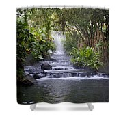 Hot Springs Shower Curtain