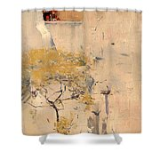 House Builders In Cairo Shower Curtain