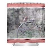 House Finch - Kiss Me Shower Curtain