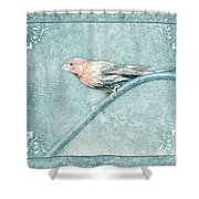House Finch With Colored Sketch Effect Shower Curtain