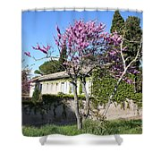 House In The Provence Shower Curtain