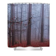 House Of Spirits Shower Curtain