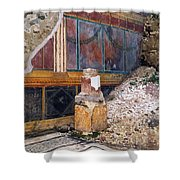 House Of The Silver Wedding, Damaged Shower Curtain