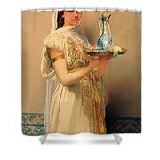 Housemaid  Shower Curtain