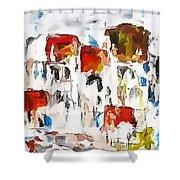 Houses 0268 Marucii Shower Curtain